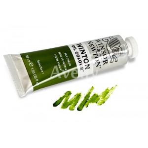 краска масляная зеленая крушина