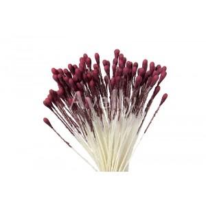Тычинки для цветов средние марсала свекольные